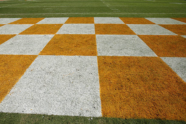 Tennessee Vols Spring