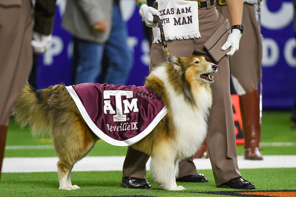 How the Aggies Can Reach the Playoff