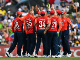 England's T20 Squad celebrate a wicket