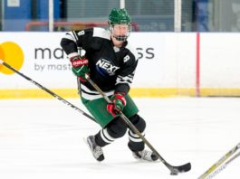 Rasmus Dahlin 2018 NHL Draft