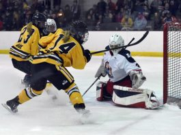 NWHL 2017-18 Season Preview and News