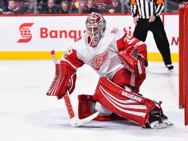 0a9287482 Detroit Red Wings Sign Jimmy Howard to A One Year Extension - Last ...