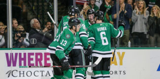 Dallas Stars Playoff Race
