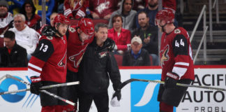 arizona coyotes playoff push