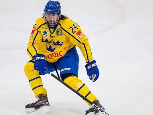 Albin Grewe Scouting Report: 2019 NHL Draft #49 - Last Word on Hockey