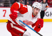 Filip Zadina Detroit Red Wings Prospects