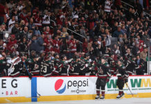 2019-20 Arizona Coyotes