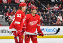 Detroit Red Wings prospects