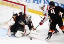Anaheim Ducks Decade