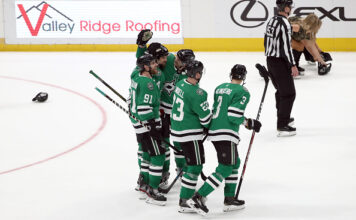 Dallas Stars comic captions
