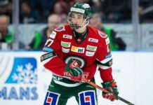 Daniel Torgersson