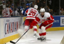 detroit red wings one hit wonders