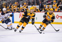 pittsburgh penguins fourth line