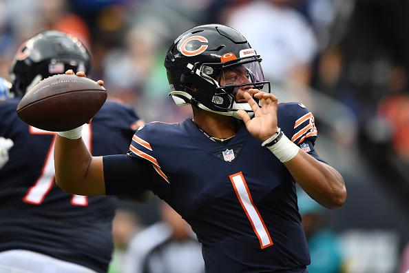 bears rebound