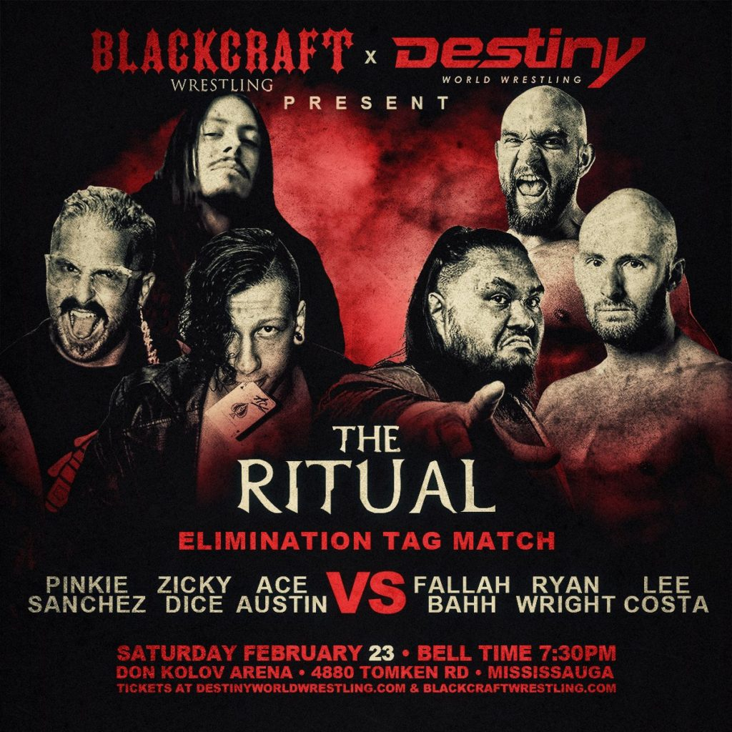 Blackcraft X Destiny survivor series
