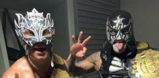 Lucha Bros