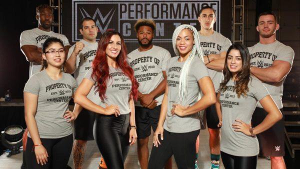 WWE PC