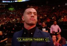 Austin Theory
