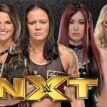 NXT Women's Division