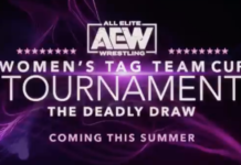 Women's Tag Team Cup