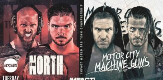 The North Motor City Machine Guns