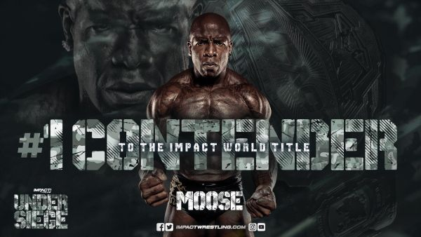 Moose Under Siege