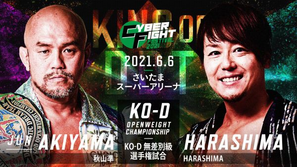 Jun Akiyama vs HARASHIMA CyberFight Festival