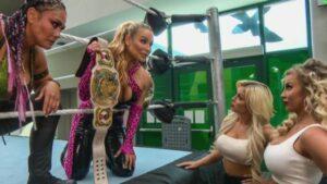 WWE womens tag team division