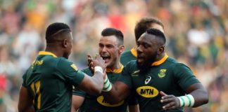 Springboks beat the Wallabies