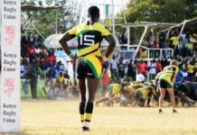 KCB Lions resilience destroys Kabras Sugar challenge