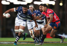 Domestic rugby distraction in Mitre 10 Cup 2019