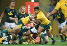 Australian Wallabies team selected for South Africa TRC fixture