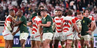Springboks smother Brave Blossoms