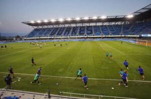 Earthquakes Stadium Pitch
