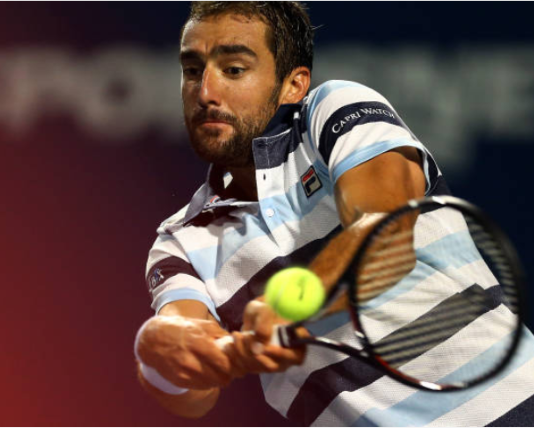 Marin Cilic Washington Open