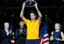 Juan Martin del Potro Top 10 Men's Players
