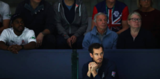 Andy Murray on the sidelines at the Davis Cup Finals