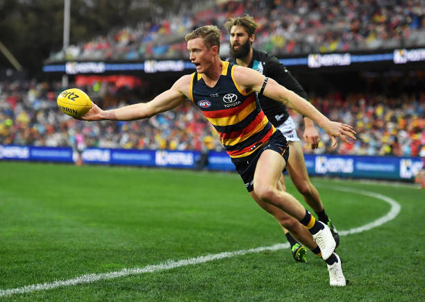 Crows Sweep The Adelaide Showdown Stay Top of the Ladder in AFL Round 20