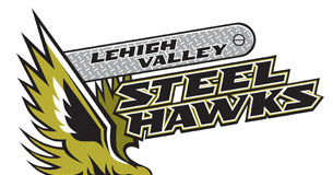 steelhawks up for sale